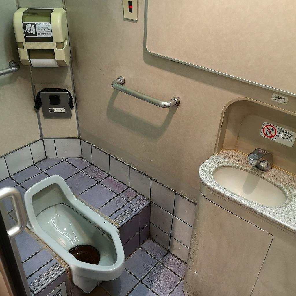 ワイドビューひだ お手洗い 和式内部